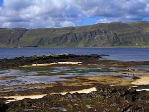 Scottish-Wildlife-Trust-Skye-seashore-field-trip