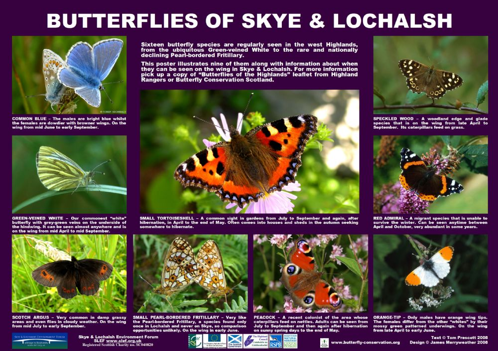 Skye And Lochalsh Environment Forum Free Posters Download Save